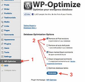 WP-Optimize Screen Capture - I should have taken a screen shot before I optimized!
